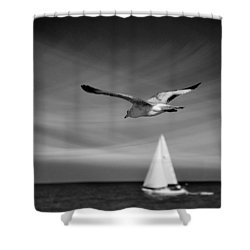 Ride The Wind Shower Curtain by Laura Fasulo