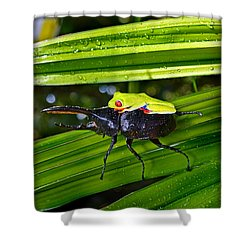 Riding Into Battle Shower Curtain by Gary Keesler