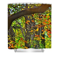Ripples Tell The Story Shower Curtain by Frozen in Time Fine Art Photography