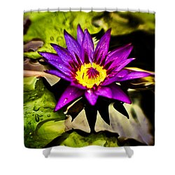 Rise And Shine Shower Curtain by Scott Pellegrin