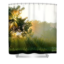 Rise And Shine Shower Curtain by Sue Stefanowicz