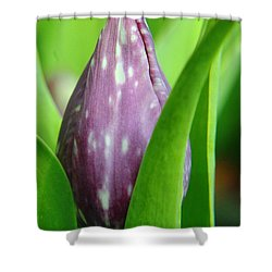 Rising To The Bloom Shower Curtain by Jeff Swan