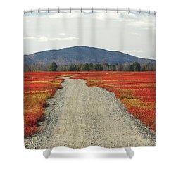 Road Through Autumn Blueberry Maine Shower Curtain by Scott Leslie