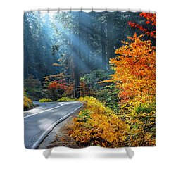 Road To Glory  Shower Curtain by Lynn Bauer