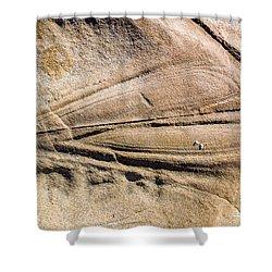 Rock Patterns Shower Curtain by Steven Ralser