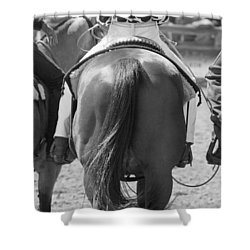 Rodeo Bums Shower Curtain by Michelle Wrighton