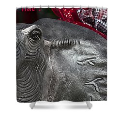 Roll Tide  Shower Curtain by Kathy Clark