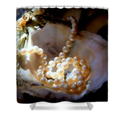 Romance Of The Sea Shower Curtain by Karen Wiles