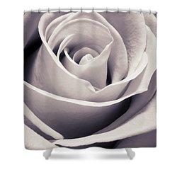 Rose Shower Curtain by Adam Romanowicz