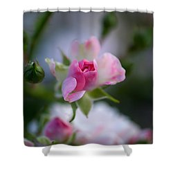Rose Emergent Shower Curtain by Rona Black