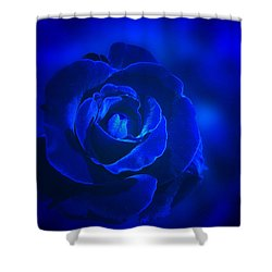 Rose In Blue Shower Curtain by Sandy Keeton