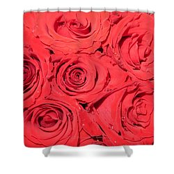 Rose Swirls Shower Curtain by Sonali Gangane