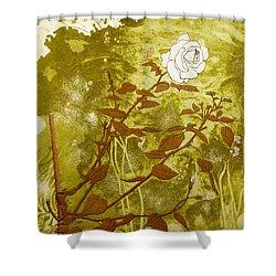 Rose Shower Curtain by Valerie Daniel