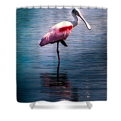 Roseate Spoonbill Shower Curtain by Karen Wiles