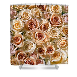 Roses 1 Shower Curtain by Mauro Celotti