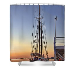 Roseway Shower Curtain by Joann Vitali