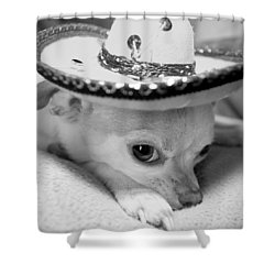 Roxie Shower Curtain by Glennis Siverson