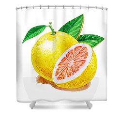 Ruby Red Grapefruit Shower Curtain by Irina Sztukowski