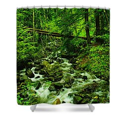 Running Down The Mountain Shower Curtain by Jeff Swan