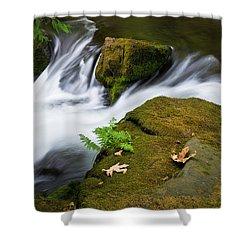 Rushing Water At Whatcom Falls Park Shower Curtain by Priya Ghose