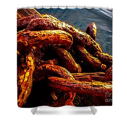 Rust Shower Curtain by Robert Bales