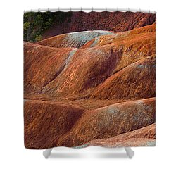 Rusty Land Shower Curtain by Barbara McMahon