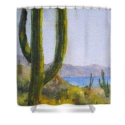 Saguaro Shower Curtain by Mohamed Hirji
