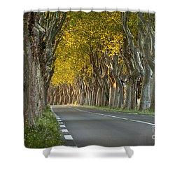 Saint Remy Trees Shower Curtain by Brian Jannsen
