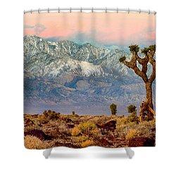 San Gorgonio Mountain From Joshua Tree National Park Shower Curtain by Bob and Nadine Johnston
