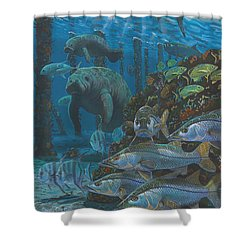 Sanctuary In0021 Shower Curtain by Carey Chen