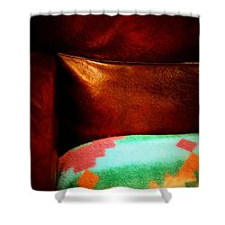 Sanctuary Shower Curtain by Newel Hunter