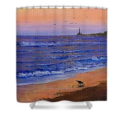 Sandpiper At Sunset Shower Curtain by C Steele