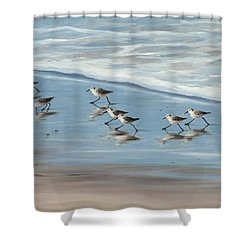Sandpipers Shower Curtain by Tina Obrien