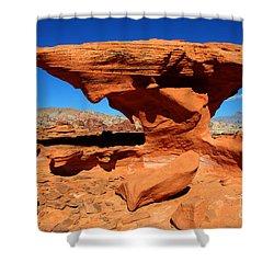 Sandstone Landscape Shower Curtain by Bob Christopher