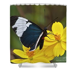Sapho Longwing Yellow Oriented Shower Curtain by Heiko Koehrer-Wagner