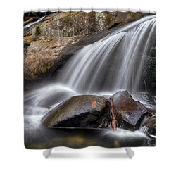 Sassy Waters Shower Curtain by Debra and Dave Vanderlaan