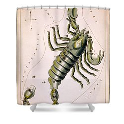 Scorpio Constellation  1825 Shower Curtain by Daniel Hagerman