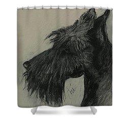 Scottish Delight Shower Curtain by Cori Solomon