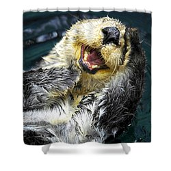 Sea Otter  Shower Curtain by Fabrizio Troiani