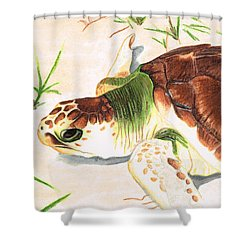 Sea Turtle Art By Sharon Cummings Shower Curtain by Sharon Cummings