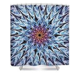 Sea Urchin Shower Curtain by Anastasiya Malakhova