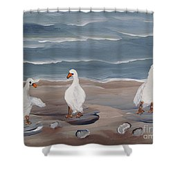 Seagulls At The Beach Shower Curtain by Beverly Livingstone