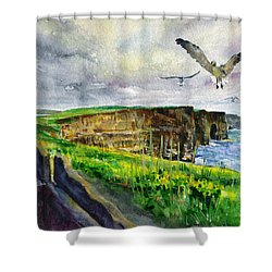 Seagulls At The Cliffs Of Moher Shower Curtain by John D Benson