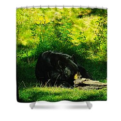 Searching For That Last Termite Shower Curtain by Jeff Swan
