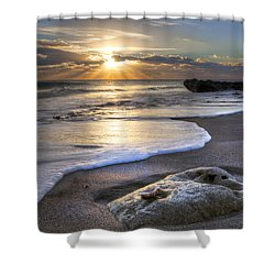 Seashell Shower Curtain by Debra and Dave Vanderlaan