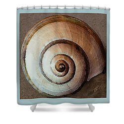 Seashells Spectacular No 34 Shower Curtain by Ben and Raisa Gertsberg