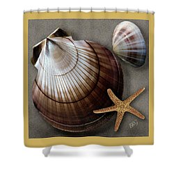 Seashells Spectacular No 38 Shower Curtain by Ben and Raisa Gertsberg