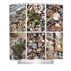 Seashore Collage Shower Curtain by Carol Groenen