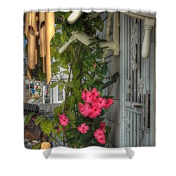 Seaside Porch Shower Curtain by Joann Vitali