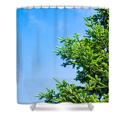 Season Greetings - Featured 3 Shower Curtain by Alexander Senin